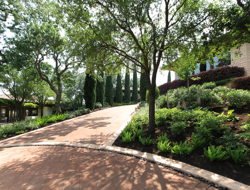 Garden Design Studio - Welcome to the Garden Design Studio!